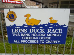 Duck Race Banner Board
