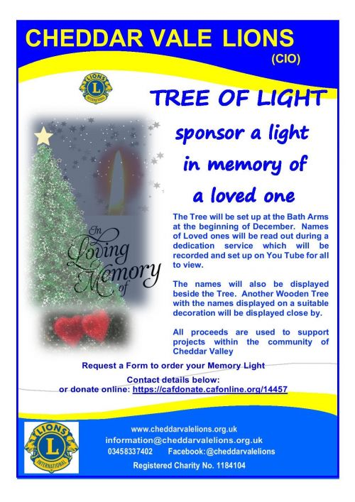 Tree of Light poster